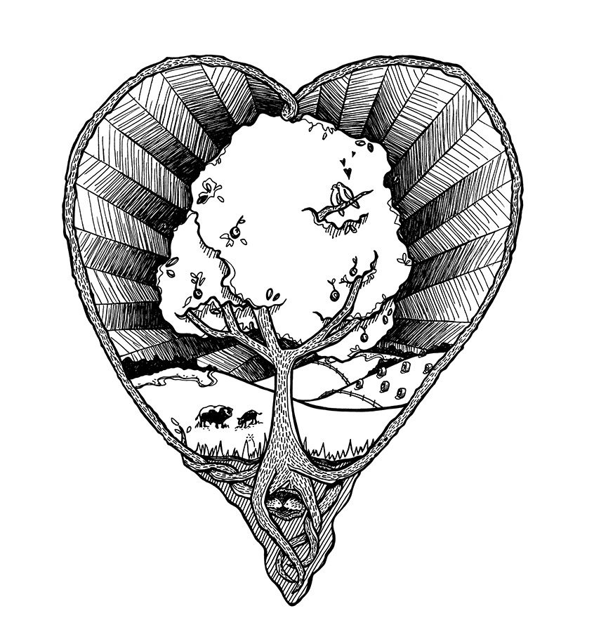Pen and Ink heart and tree illustration