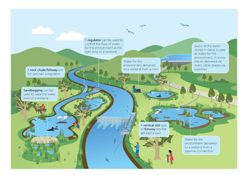 Illustrated diagram of how water is reused in Victoria